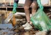 Jak wybrać dobre worki na śmieci